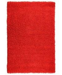 Kusový koberec PRIM SH070/R11 F. Red, Rozměry 60x110 Sofiteks