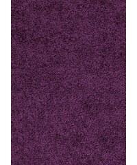 Kusový koberec Dream Shaggy 4000 Lila, Rozměry 80x150 Ayyildiz Teppiche