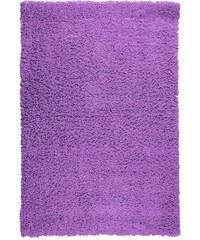 Kusový koberec PRIM SH070/FR3 Lila, Rozměry 60x110 Sofiteks