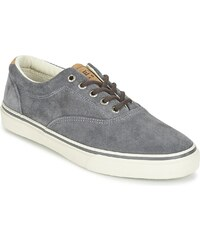Sperry Top-Sider Chaussures STRIPER LL CVO SUEDE