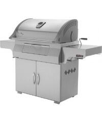 NAPOLEON Charcoal Professional PRO605CSS