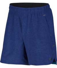 Nike Herren Trainingsshorts Flex