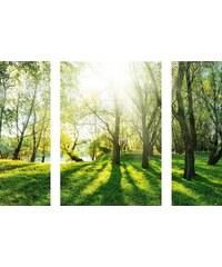 Eurographics Wandtattoos »Summer Forrest«, 70/50cm