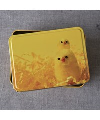 CHICKY CHICKS Dóza hranatá