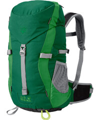 Jack Wolfskin Kids Alpine Trail sac à dos enfants green