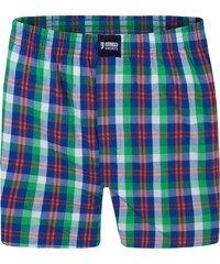 Happy Shorts Boxershorts 'Karos' grün/mehrfarbig
