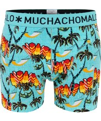 Muchachomalo Shorts 'Seasons'