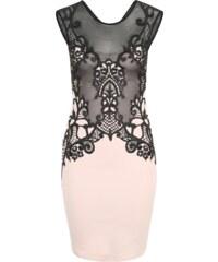 Lipsy Kleid mit Spitzenstickerei