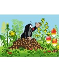 Vopi Dětský koberec Krteček a květiny, 95x133 cm - barevný