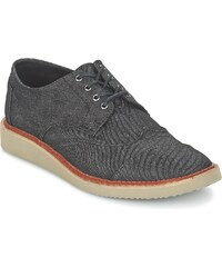 Toms Chaussures BROGUE
