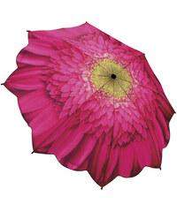Blooming Brollies Dámský skládací plně automatický deštník Galleria Gerbera Daisy Floral GFFGD