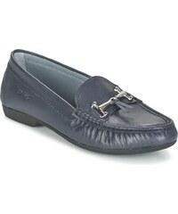 Arcus Chaussures PERDOL