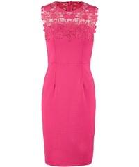 Dorothy Perkins SHOWCASE Robe fourreau pink