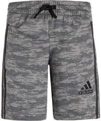 adidas Performance ATHLETICS Short de sport solid grey/grey/black