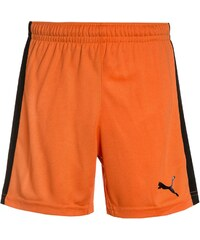 Puma PITCH Short de sport team orange/black