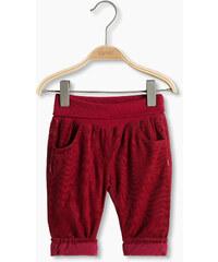 Esprit Pantalon doublé, 100 % coton bio