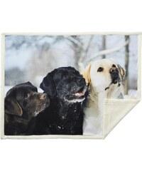Home Linen Plaid imprimé 3 chiens - 150x200 cm - 100% polyester - 1 face microfibre + 1 face Sherpa