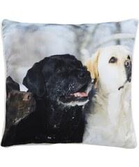 Home Linen Coussin imprimé 3 chiens - env. 50x50 cm - 100% polyester - 1 face microfibre + 1 face Sherpa