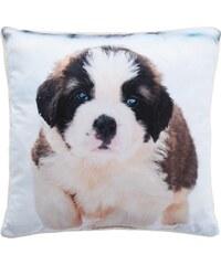 Home Linen Coussin imprimé Puppy - env. 50x50 cm - 100% polyester - 1 face microfibre + 1 face Sherpa