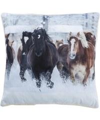 Home Linen Coussin imprimé Chevaux - env. 50x50 cm - 100% polyester - 1 face microfibre + 1 face Sherpa