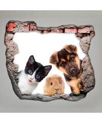 Lesara 3D-Wandsticker für die Zimmerdecke Tiere - Haustiere