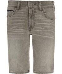 DC Shoes WORKER Short en jean grey stone