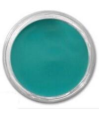 Allepaznokcie Lux Akrylová barva na nehty turquoise 10ml