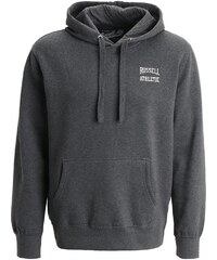 Russell Athletic Kapuzenpullover grey