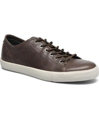 Frye - Brett Low - Sneaker für Herren / braun