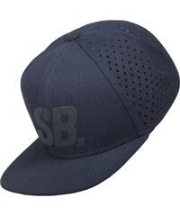 Nike Sb Reflect Pro Cap obsidian/black