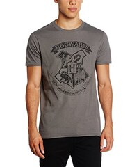 Harry Potter Herren T-Shirt Distressed Hogwarts M