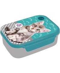 Box na svačinu Kočka