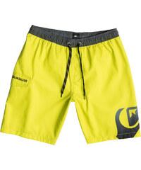 """Quiksilver Side Swipe 19"""" Swim Shorts"""