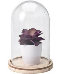 Lesara Deko-Pflanze mit Glashaube - Violett