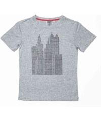 Redskins T-shirt - gris