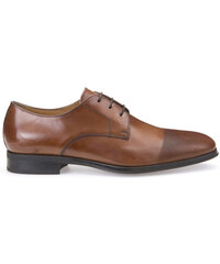 Geox Chaussures Classiques - PERICLE