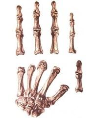 Zranění tetování na ruku kosti