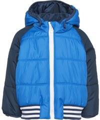 adidas Performance DOUDOUNE Veste d'hiver shock blue/mineral blue