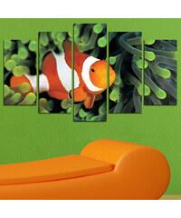 Lesara 5-teiliges Wandbild Clownfisch