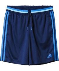adidas Performance CONDIVO 16 kurze Sporthose collegiate navy/blue