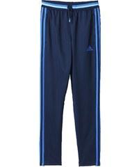 adidas Performance CONDIVO16 Jogginghose collegiate navy/blue