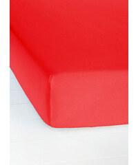 bpc living Spannbettlaken Jersey Microfaser in rot von bonprix