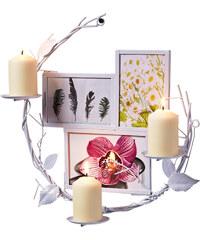 bpc living 2-in-1 Bilderrahmen inkl. Kerzenhalter Isa in weiß von bonprix