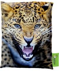 Impar Designový sedací vak 140x200 cm gepardí pohled