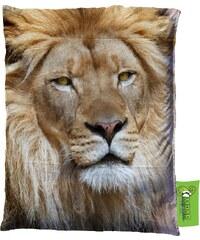 Impar Designový sedací vak 140x200 cm lví pohled