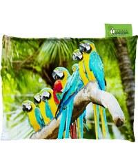 Impar Designový sedací vak 140x200 cm papoušci