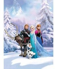 Fototapete Frozen Winterland 184/254 cm KOMAR bunt