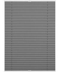 Plissee Lichtblick Klemmfix verspannt Faltenstore Verdunkelnd/Energiesparend Fixmaß ohne Boh LICHTBLICK grau 7 (H/B: 130/110),8 (H/B: 130/120)