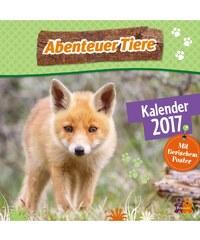 DuMont Kalenderverlag GmbH & Co. KG Nástěnný kalendář Dobrodružství zvířat / Abenteuer Tiere 2017 17DU3614