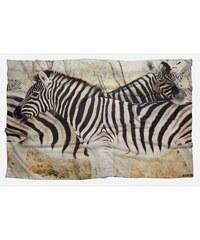 Millscellanees Zebras - Chèche - imprimé